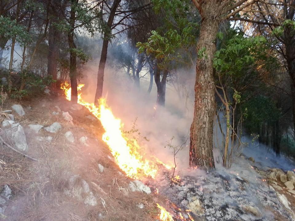 Assediati dalle fiamme, roghi e terrore