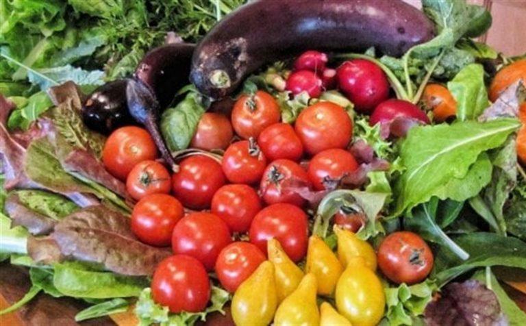 I segreti della dieta mediterranea Un recente studio ha stabilito che osservandola si vive di più