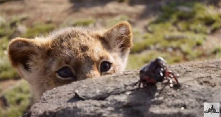 Torna 'Il Re Leone' remake del classico Disney