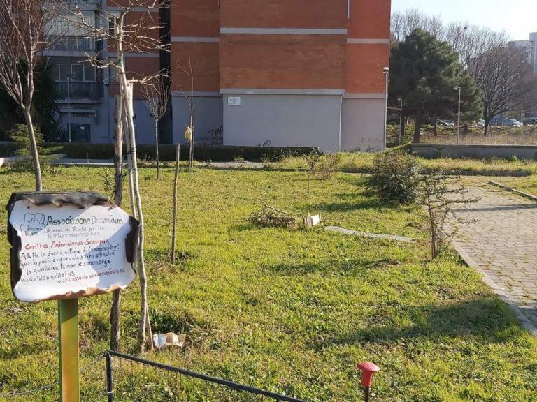 Scampia, Vandalizzato l'albero di Antonio Landieri, vittima innocente della camorra