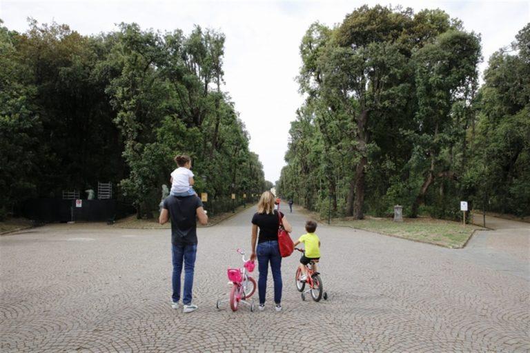 Riaperto il Real Bosco di Capodimonte: recuperati 24 ettari in più e 14 chilometri di viali, impiantati 1000 tra alberi e arbusti