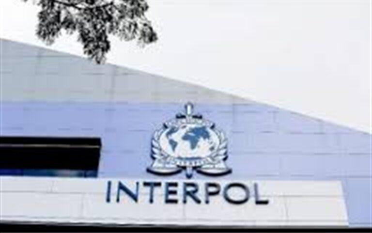 Interpol, vigilare su rischio di vaccini contraffatti
