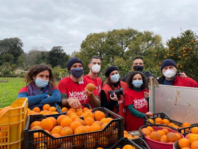 Le arance e i mandarini del Giardino Torre nel Museo e Real Bosco di Capodimonte donate ad Emergency per il progetto 'Nessuno escluso' a sostegno delle famiglie in difficoltà